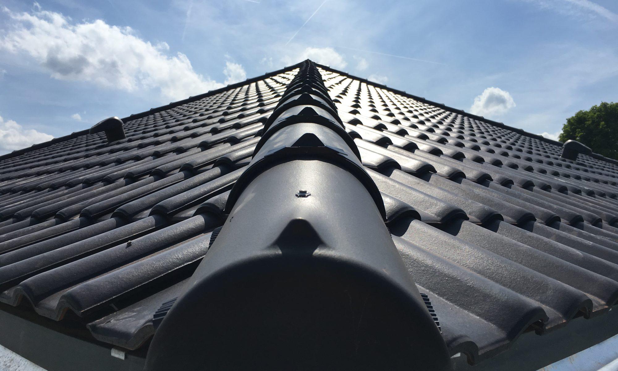 Viebrockhaus Maxime 800 Dach